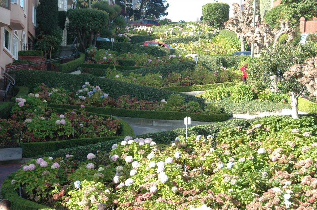 San Francisco Lombard Street heiditravelsusa.nl
