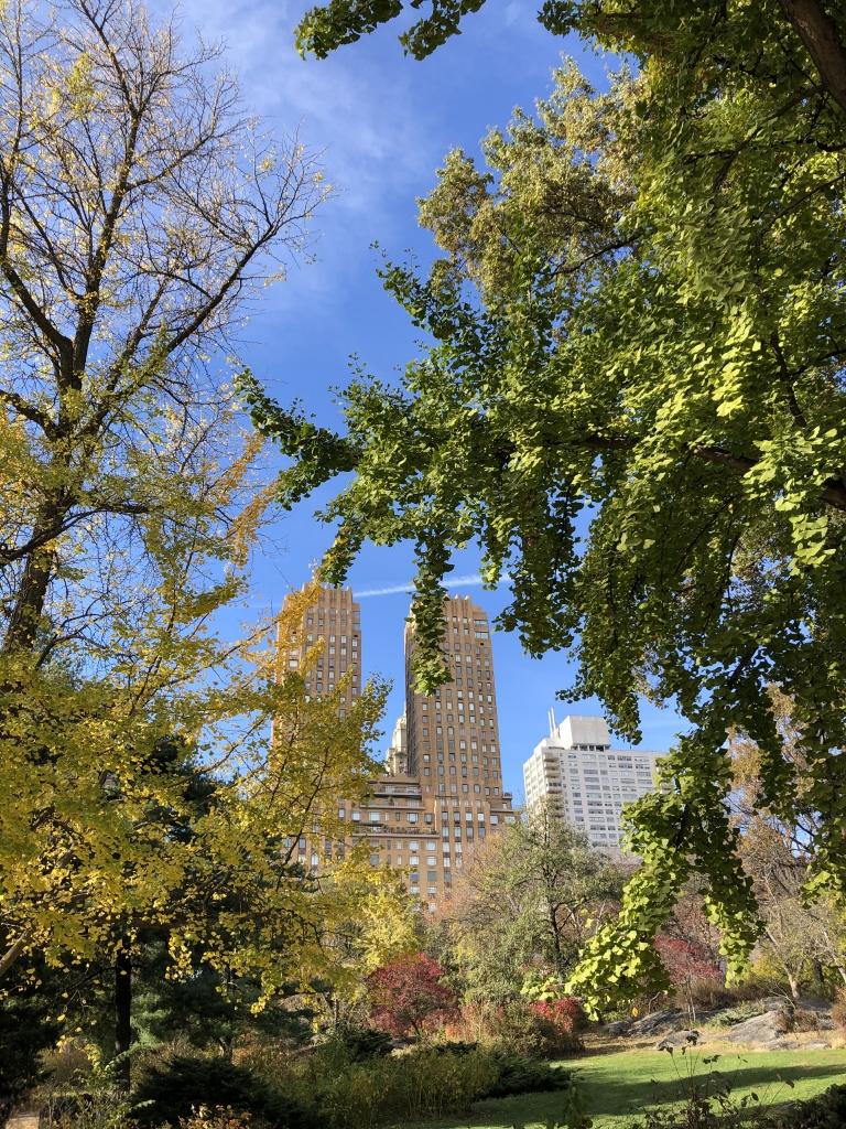fietsen in Central Park New York City heiditravelsusa.nl